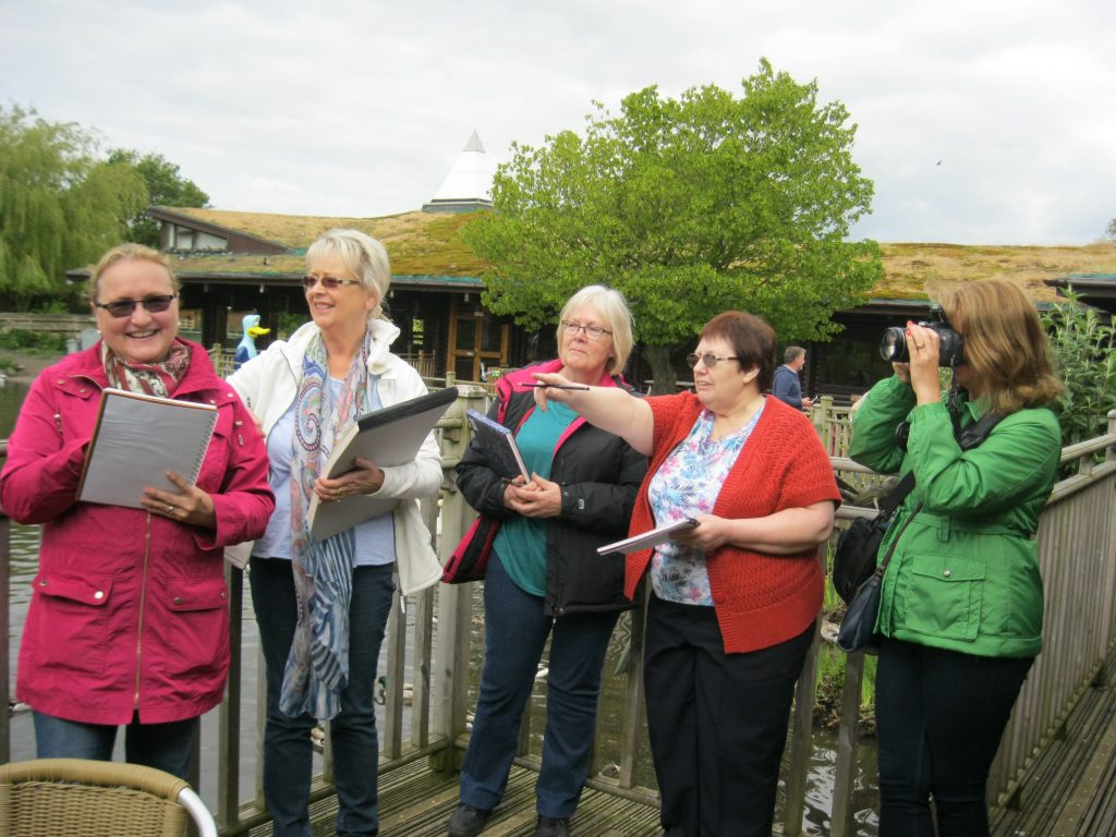 drawing and painting for beginners, merseyside. visit to Martin Mere wetland trust